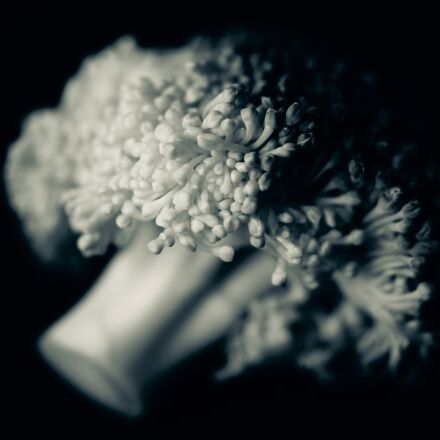 black, and, white, broccoli, Sony SLT-A58