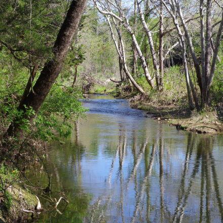 creek, reflecting, trees, Pentax K-30