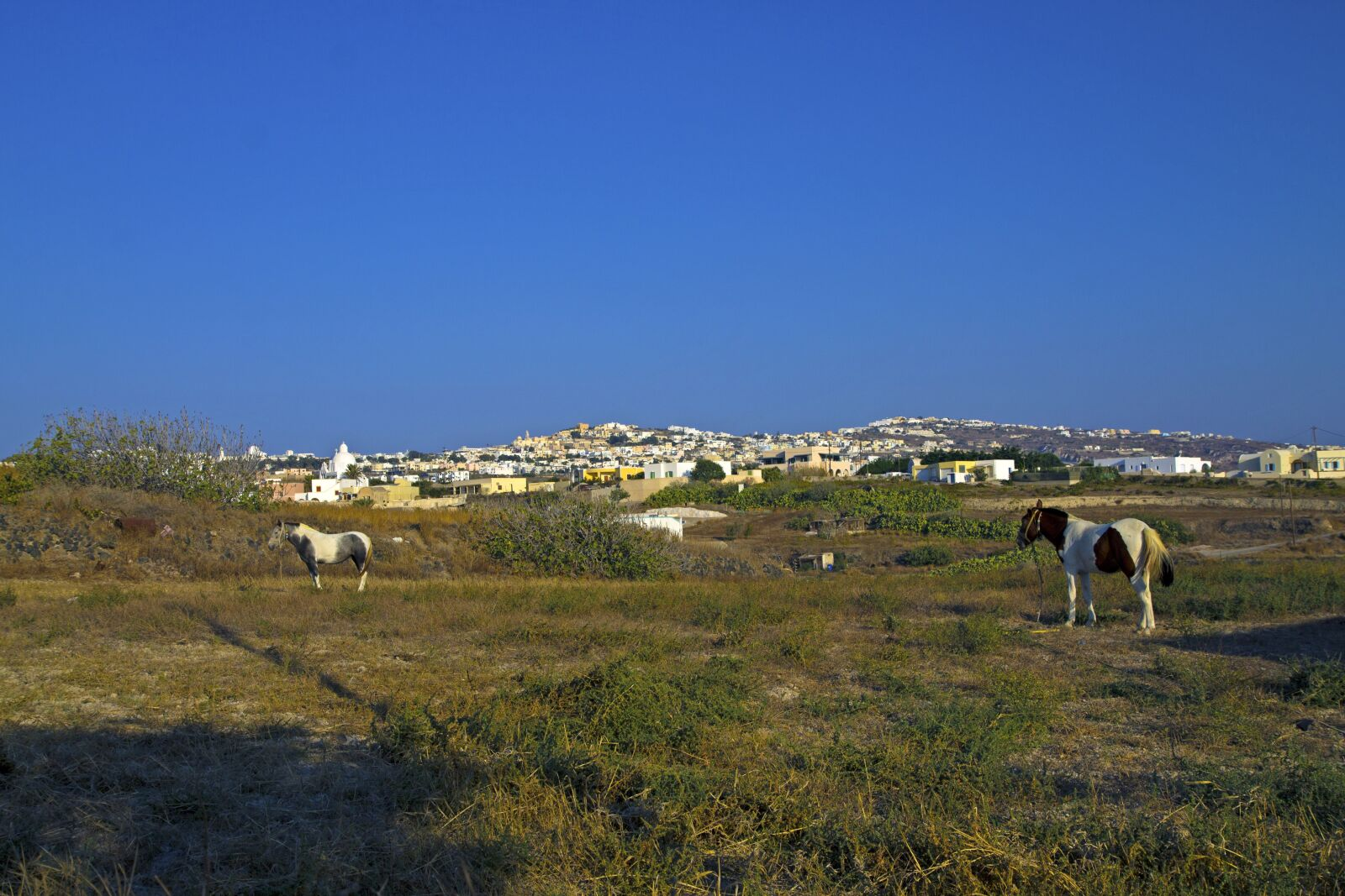 "Canon EOS 1100D (EOS Rebel T3 / EOS Kiss X50) sample photo. ""Santorini, nature, landscape"" photography"