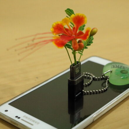 chain, flower, key, mobile, Canon EOS 760D