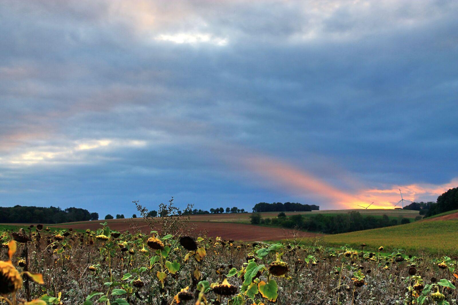 """Canon EOS 1100D (EOS Rebel T3 / EOS Kiss X50) sample photo. """"Autumn evening, sky, nideggen-berg"""" photography"""