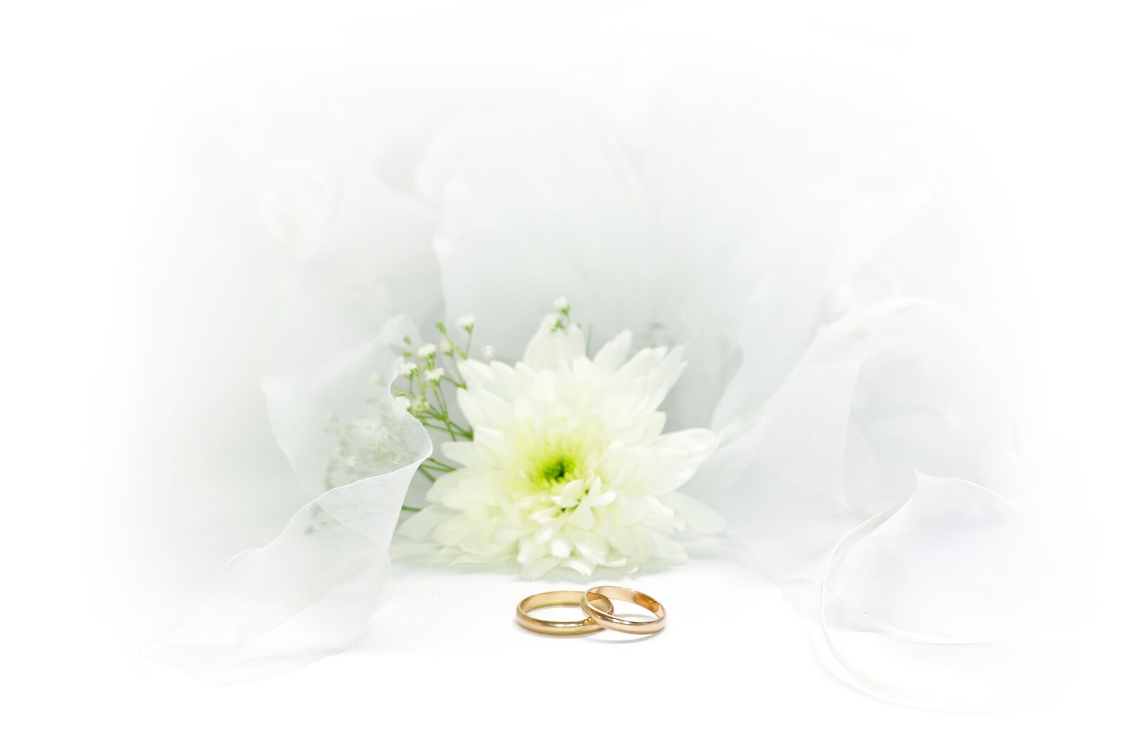 """Pentax K10D sample photo. """"Wedding, rings, marry"""" photography"""
