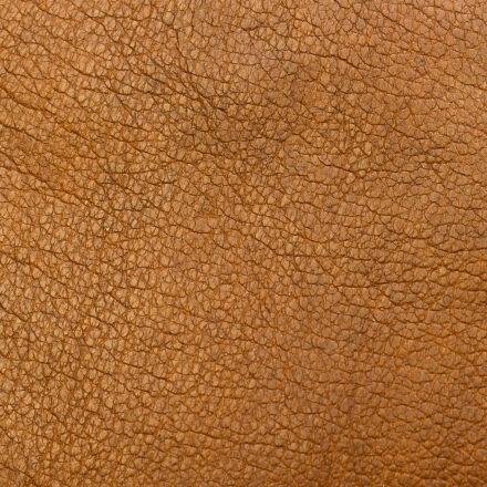 background, brown, closeup, colors, Canon EOS 550D