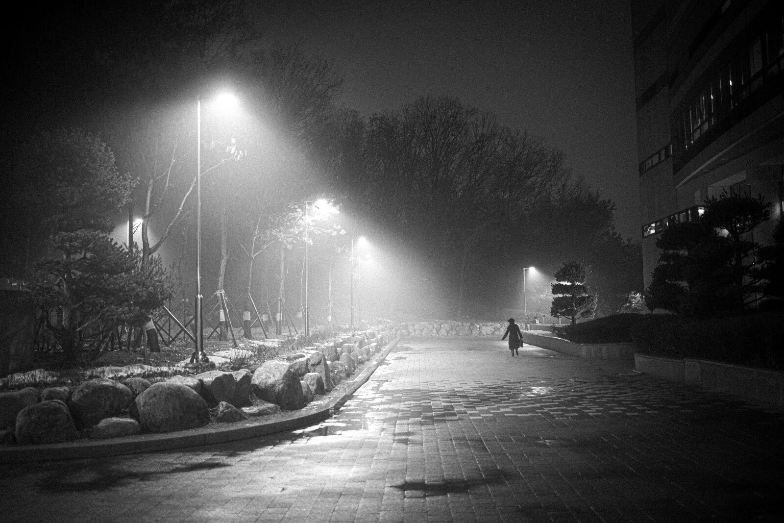 Foggy and rainy night