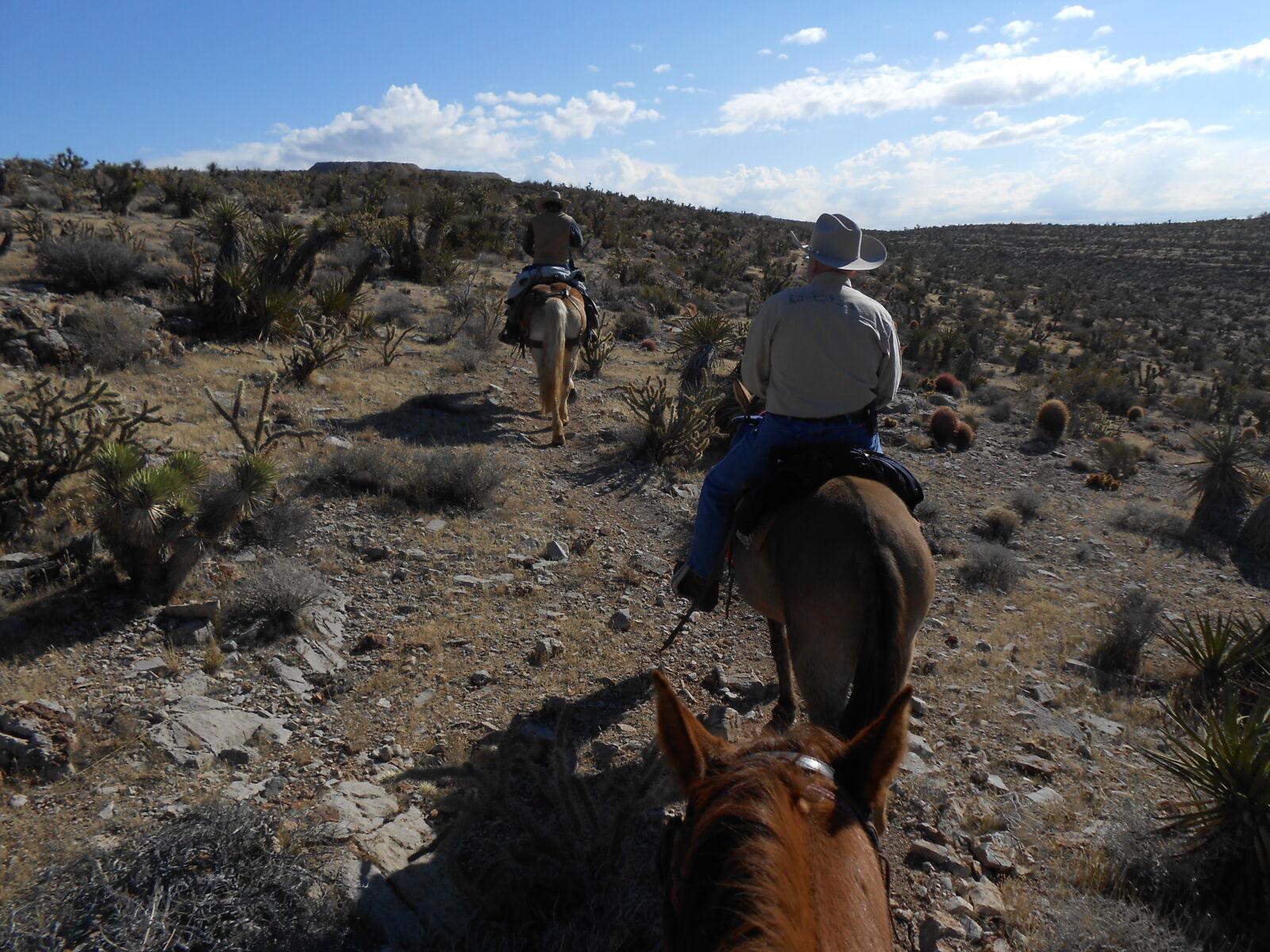 "Nikon Coolpix S4300 sample photo. ""Desert, horseback, riding"" photography"