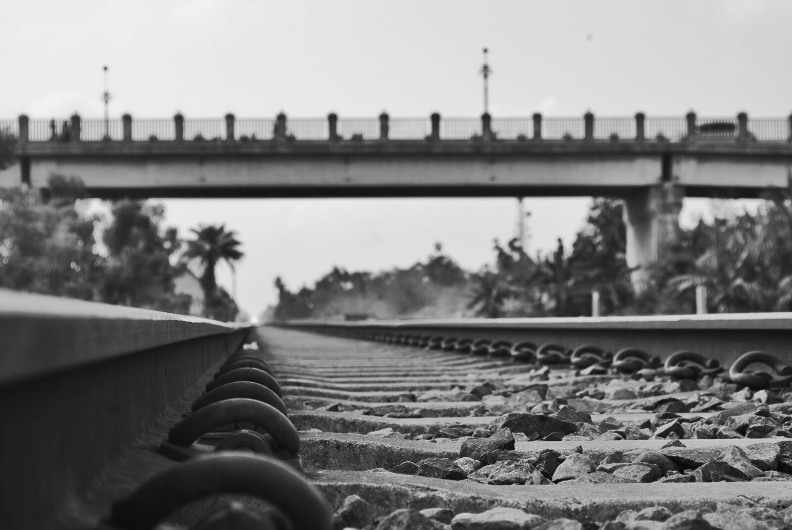 "Nikon D3000 sample photo. ""Train"" photography"