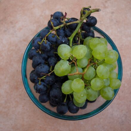 grapes, red, blue, Olympus E-PM2