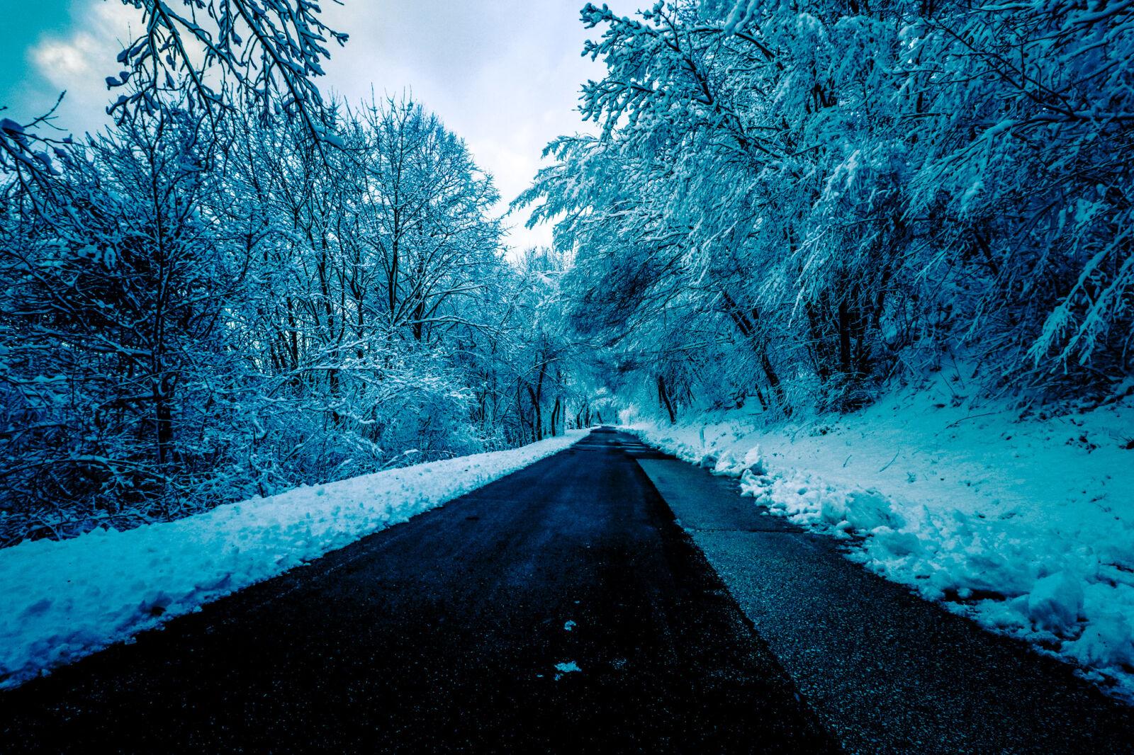 "Canon EOS 80D sample photo. ""Black, concrete, road, surrounded"" photography"
