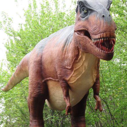 tyrannosaurus rex, dinosaur, giant, Canon POWERSHOT SD880 IS