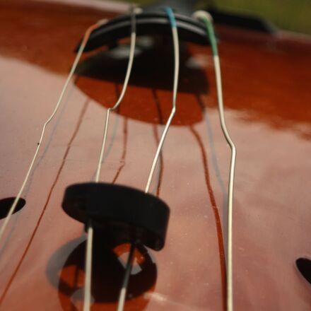 bass, broken, double, bass, Canon EOS DIGITAL REBEL XSI