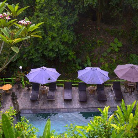 bali, nature, pool, Panasonic DMC-GH3