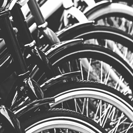 grayscale, photography, of, bicycle, Canon EOS 60D