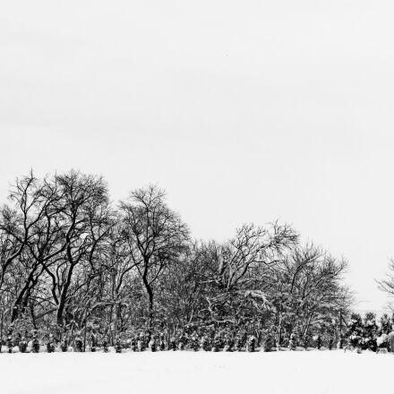 snow, black and white, Canon EOS 550D